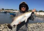 Một số chia sẻ về kinh nghiệm câu cá biển hiệu quả