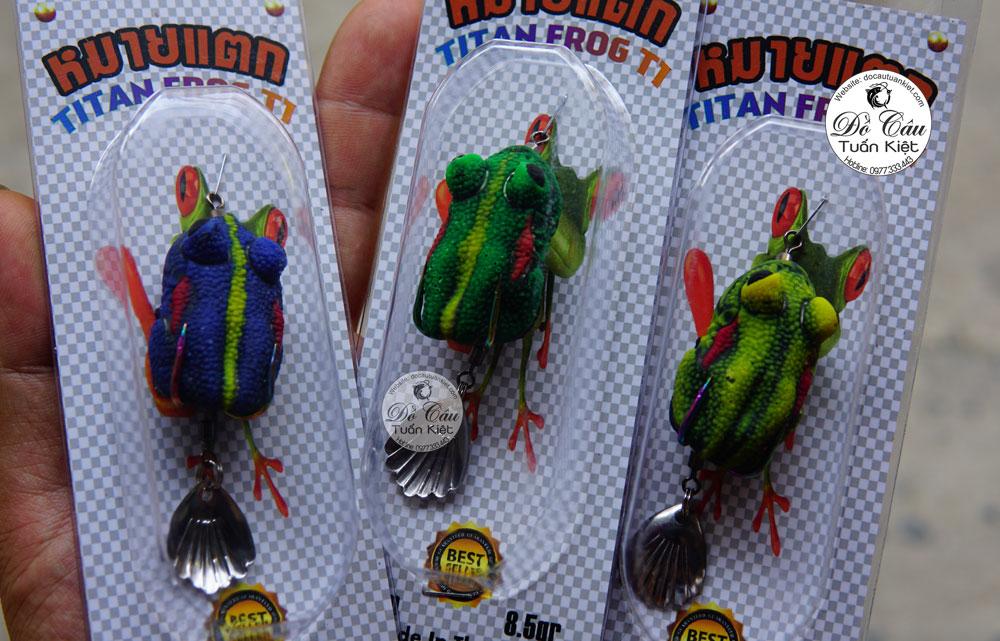 Nhái hơi Thái Lan Frog  T1